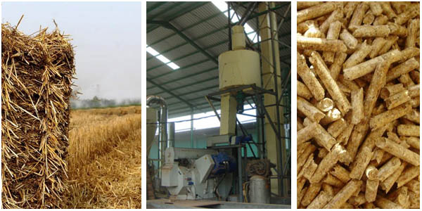 Effect of pore size sieve to the production straw