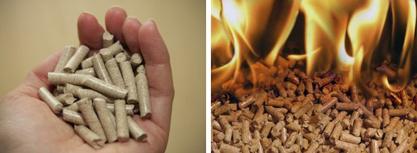 Wood Pellets France ~ Fuel pellet market of france