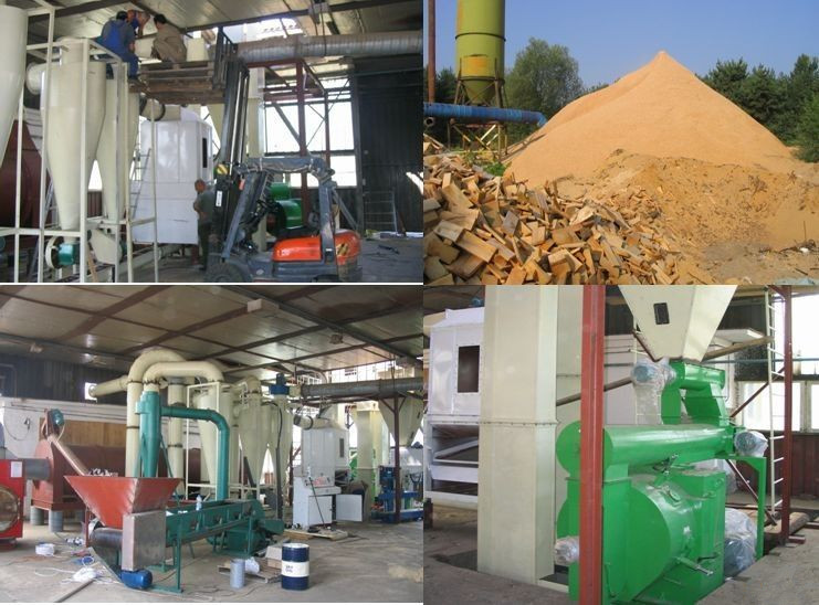 Biomass wood pellet fuel market analysis of the netherlands