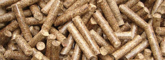 Wood Pellets Are Used For What ~ Development of wood pellet plant in