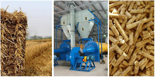 Biomass pellet mill is guiding the development of low carbon