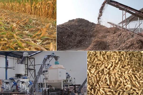 Biomass pellet plant promotes the transition to low carbon