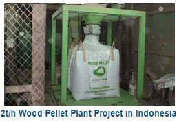 2t/h Wood pellet plant in Indonesia