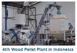 4t/h Wood Pellet Plant in Indonesia