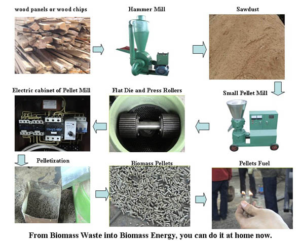 Flow Chart of Pelletization from Hammer Mill to Small Pellet Mill