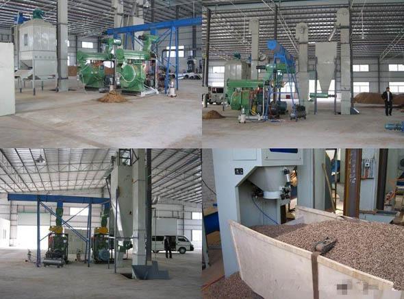 Strategic positioning of renewable energy biomass pellet