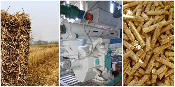 Pellet mill promotes the reuse of straw kmec plant