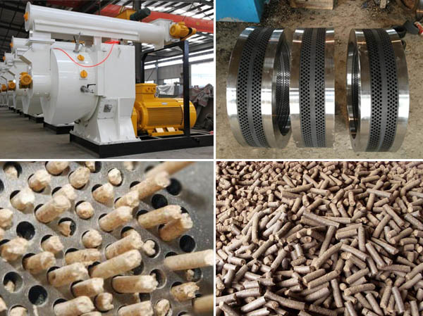 Ring die failure in biomass pellet production