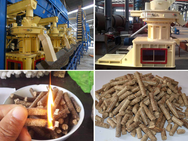 pellet fuel and biomass pellet machine